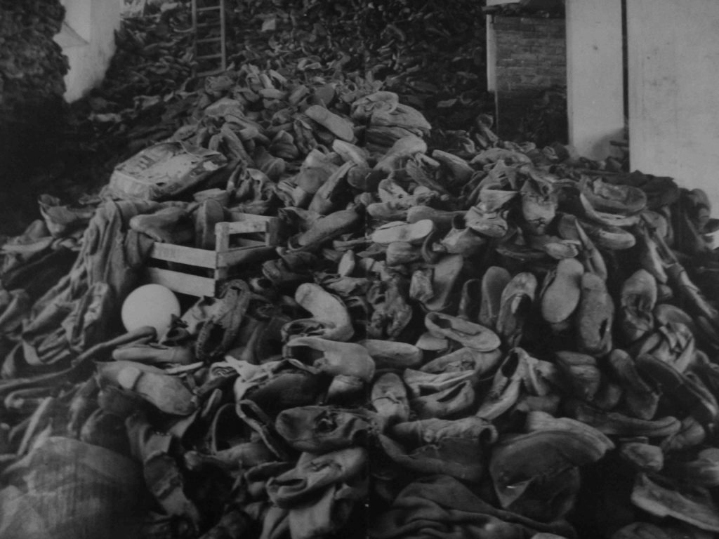 a history of auschwitz a concentration camp established by nazis A history of auschwitz a concentration camp established by nazis  more essays like this: concentration camp, auschwitz, nazi germany, history of auschwitz.