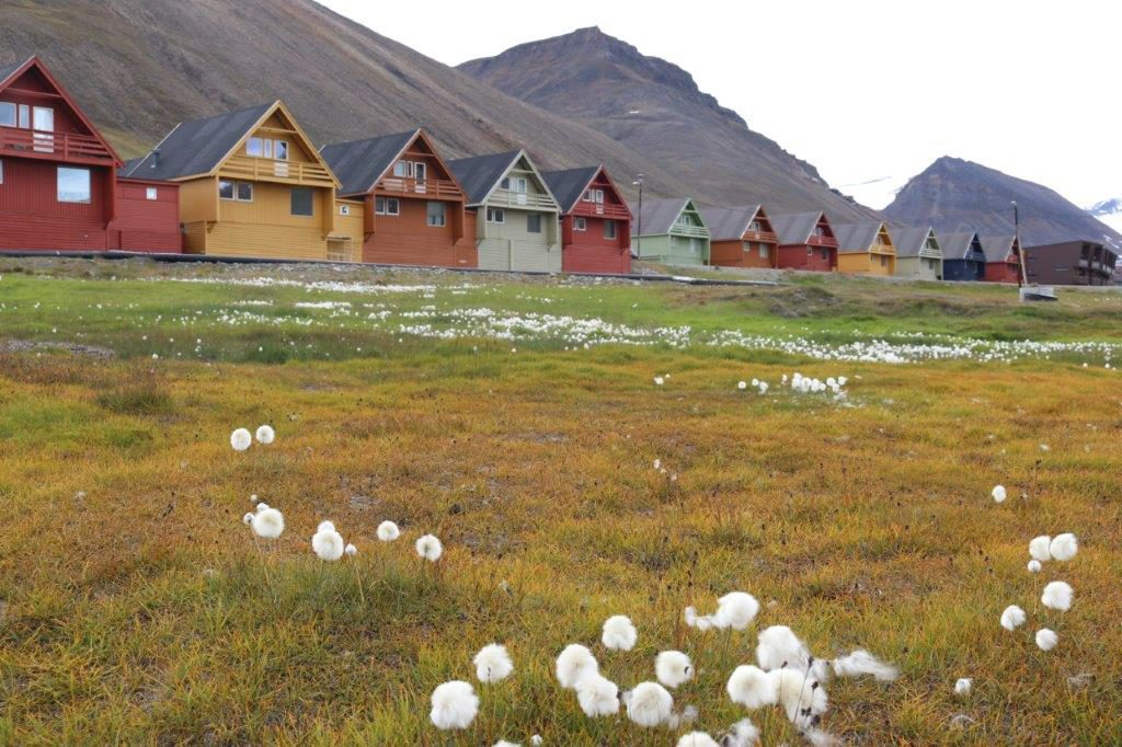 Svalbard: 10 Things You May Not Know